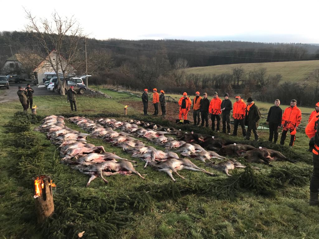 Driven hunting in SLOVAKIA - season 2020 -