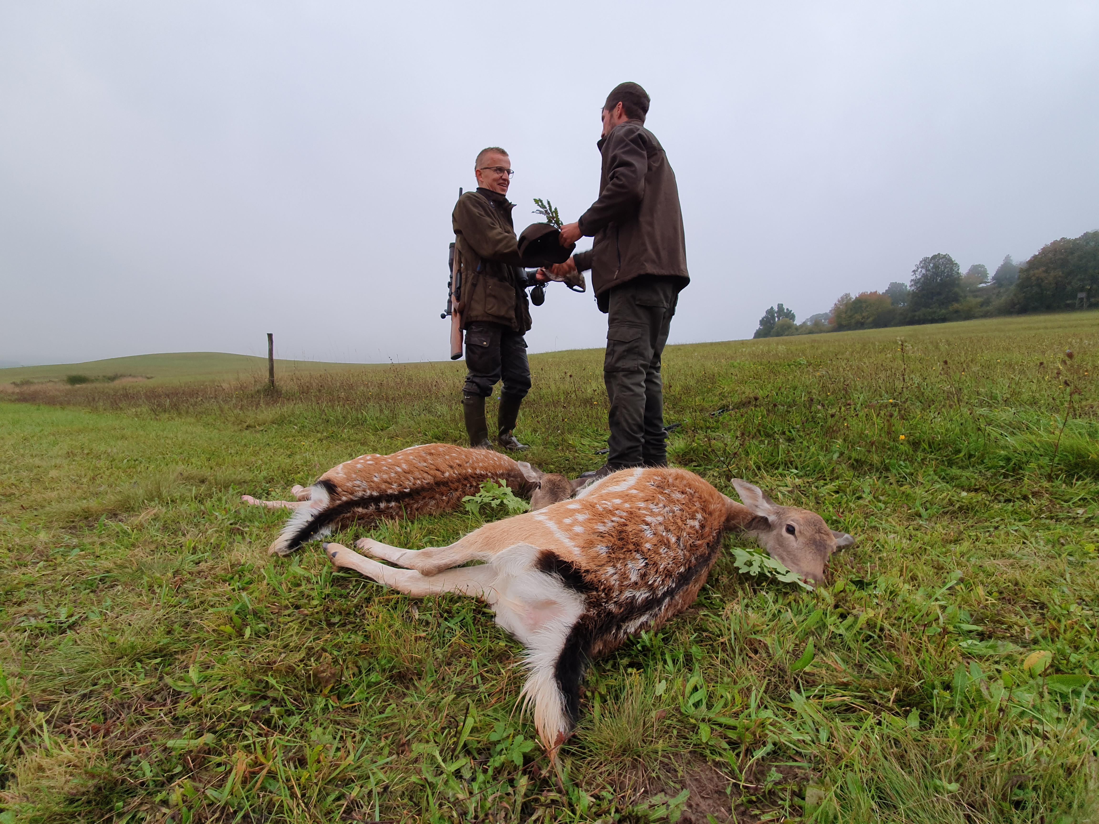 Non-trophy game hunting - season 2020 -