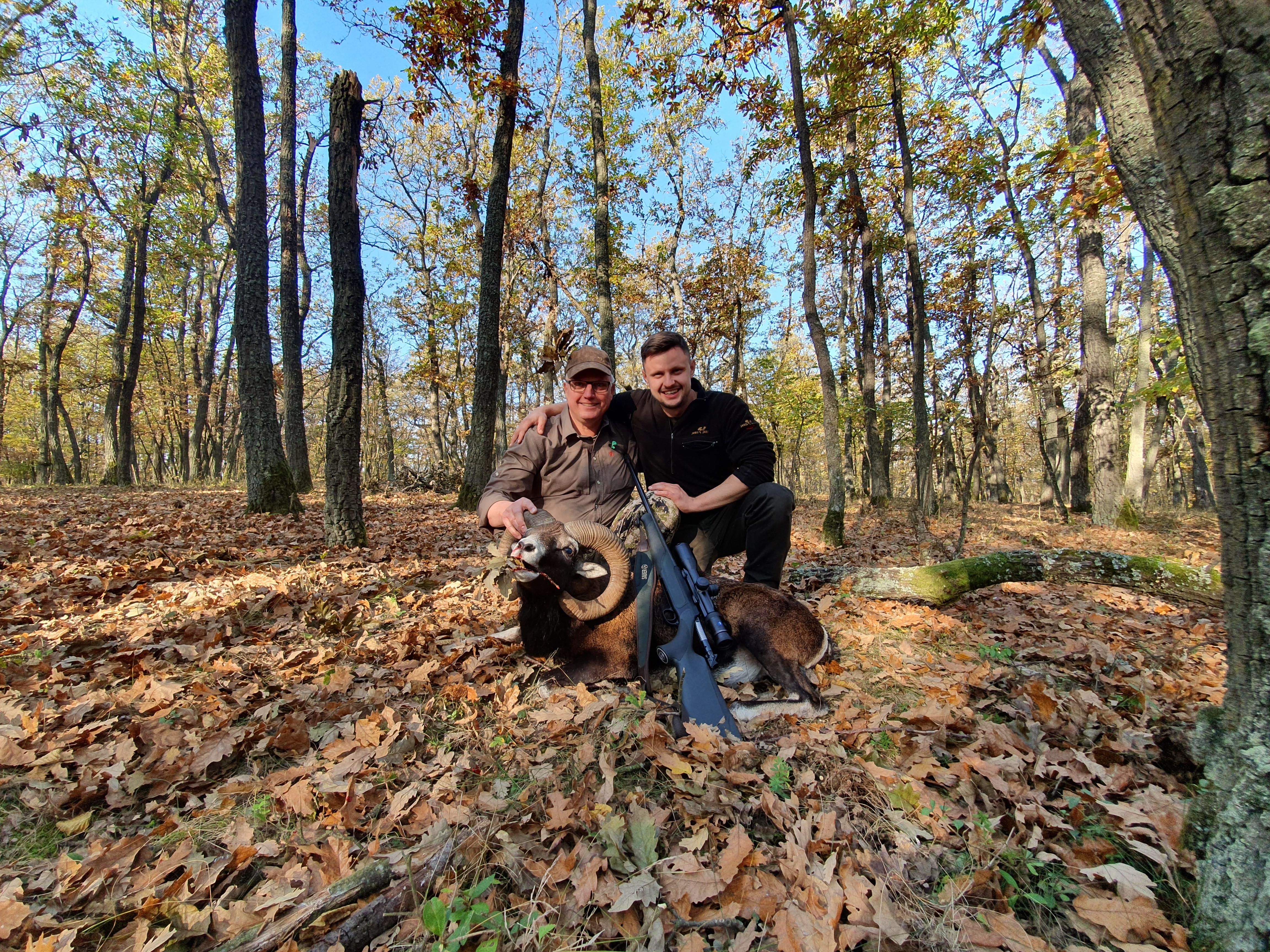 Mouflon hunting in SLOVAKIA – season 2020 -