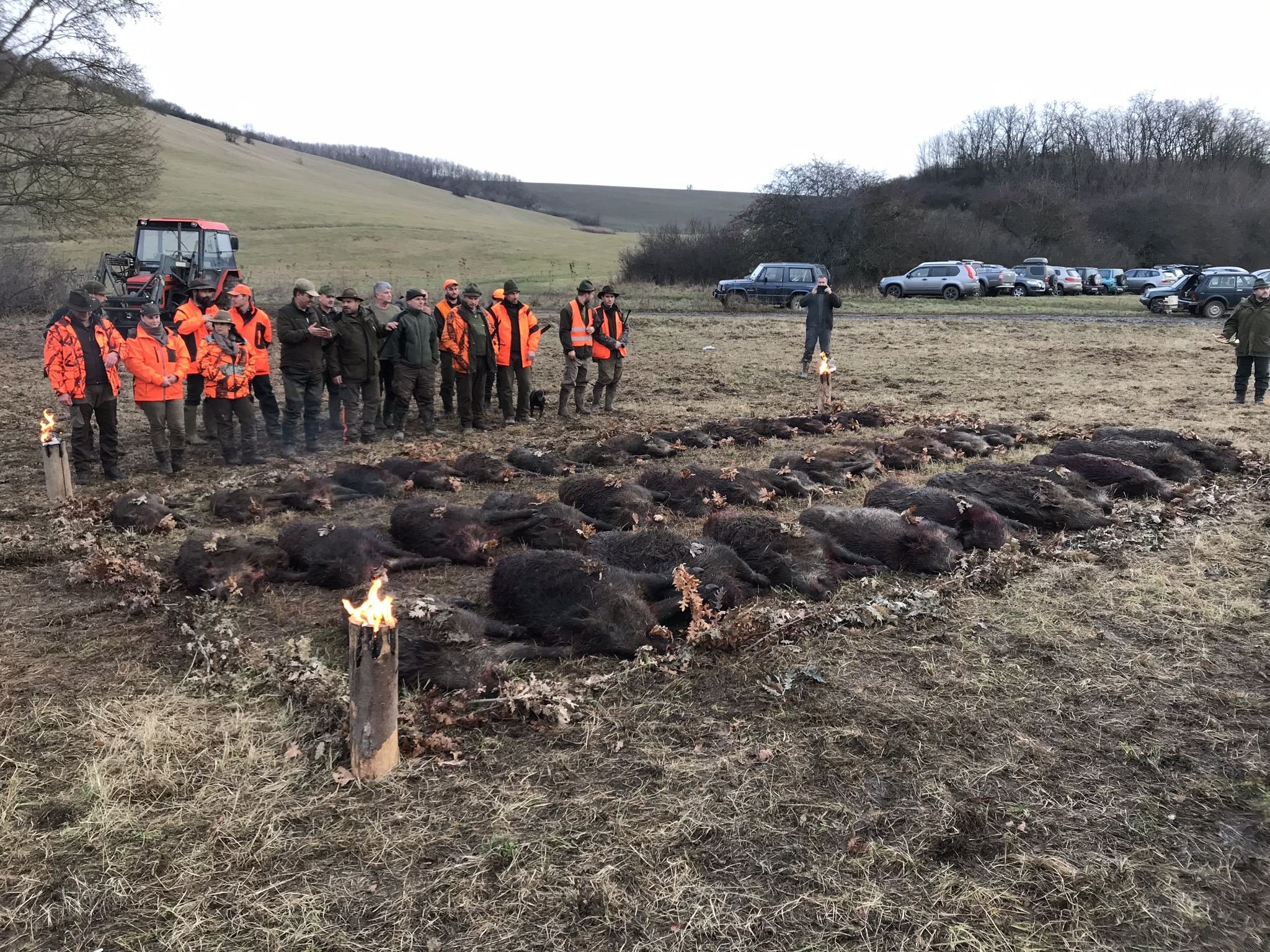 Driven hunting in SLOVAKIA - season 2020